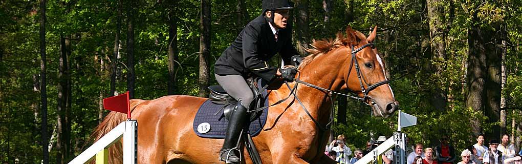 Na koni pretekár absolvuje parkúr kde je 15 prekážok